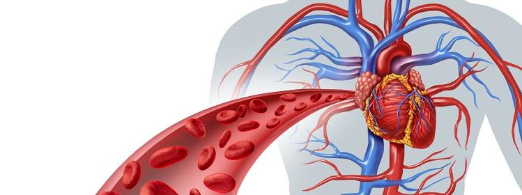 szív-vérellátás zavar