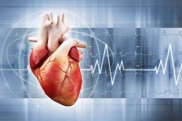 Gyakori kérdések és válaszok a szívrohamról