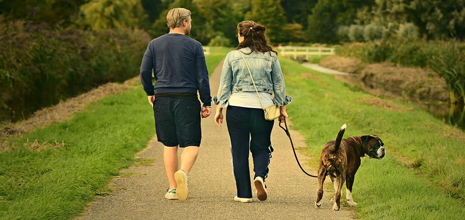 Hogyan kell élni, mozogni sztent beültetés után?